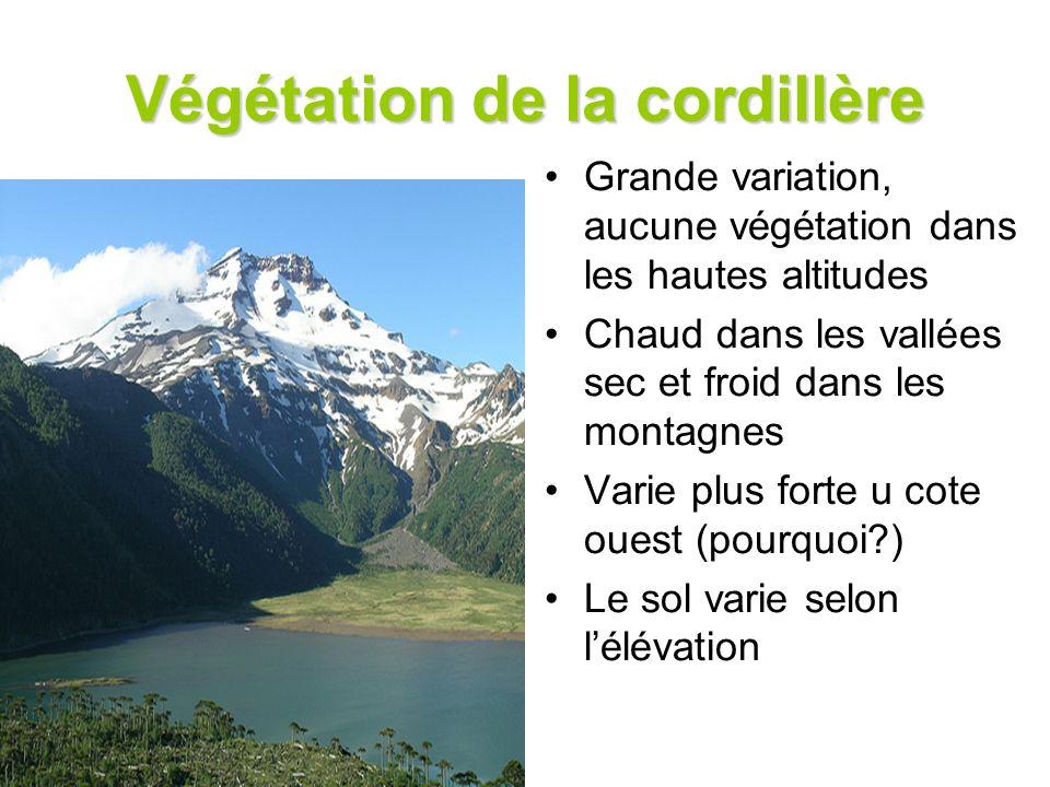 Végétation de la cordillère Grande variation, aucune végétation dans les hautes altitudes Chaud dans les vallées sec et froid dans les montagnes Varie