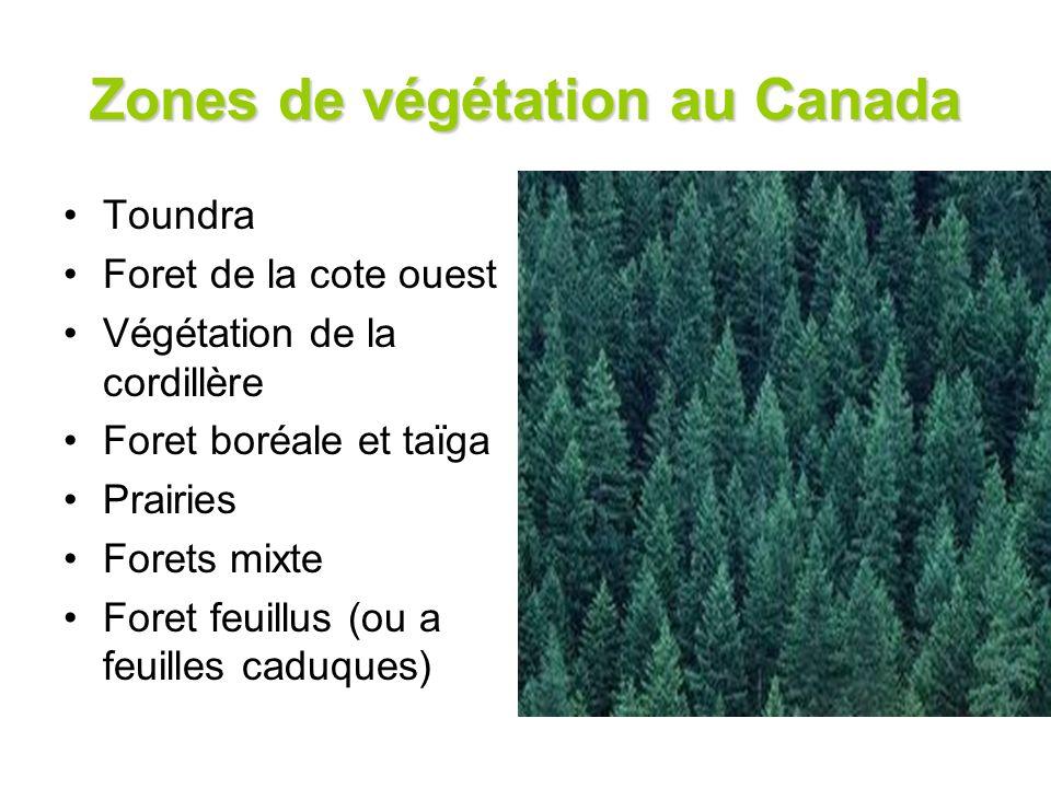Zones de végétation au Canada Toundra Foret de la cote ouest Végétation de la cordillère Foret boréale et taïga Prairies Forets mixte Foret feuillus (