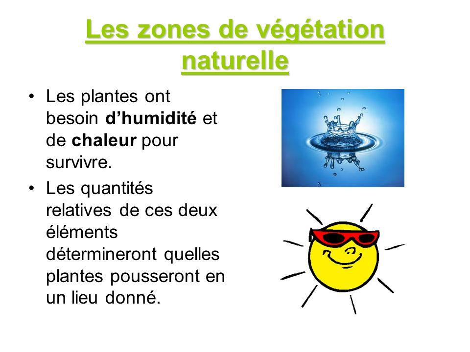 Les zones de végétation naturelle Les plantes ont besoin dhumidité et de chaleur pour survivre. Les quantités relatives de ces deux éléments détermine