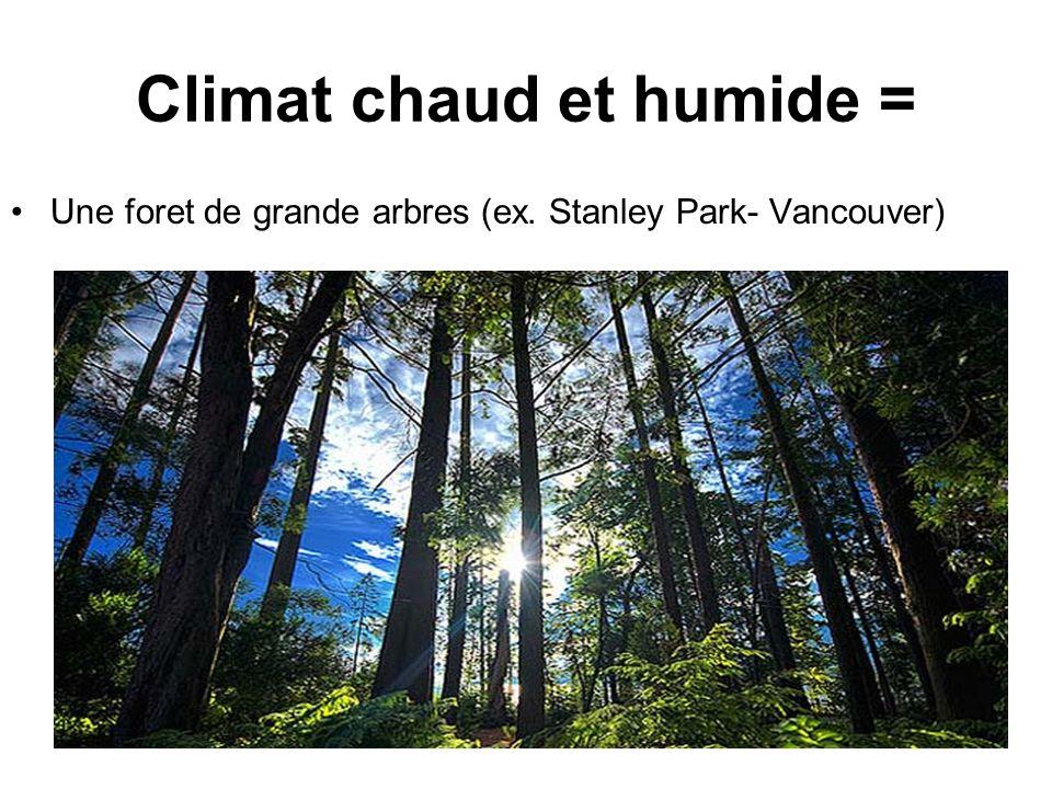 Climat chaud et humide = Une foret de grande arbres (ex. Stanley Park- Vancouver)