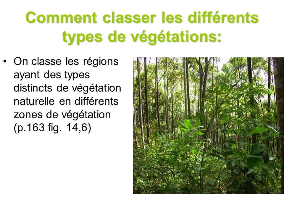 Comment classer les différents types de végétations: On classe les régions ayant des types distincts de végétation naturelle en différents zones de vé