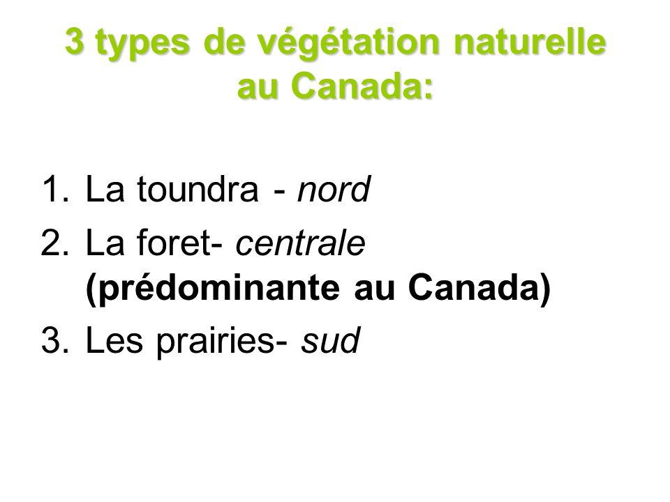 3 types de végétation naturelle au Canada: 1.La toundra - nord 2.La foret- centrale (prédominante au Canada) 3.Les prairies- sud