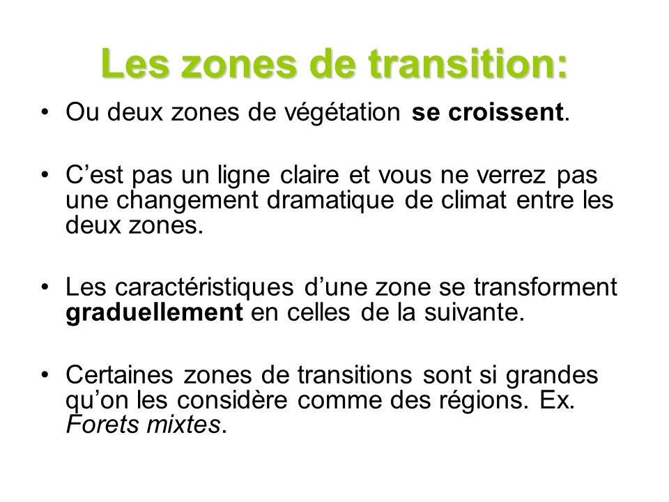 Les zones de transition: Ou deux zones de végétation se croissent. Cest pas un ligne claire et vous ne verrez pas une changement dramatique de climat