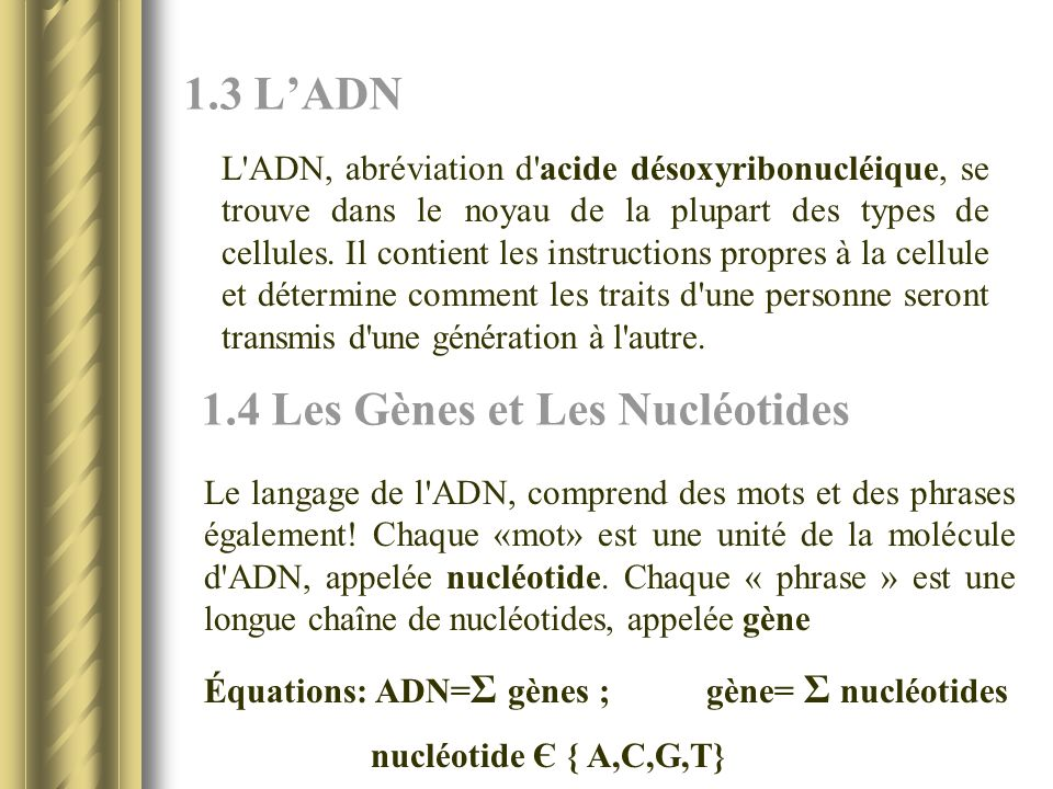 1.3 LADN L'ADN, abréviation d'acide désoxyribonucléique, se trouve dans le noyau de la plupart des types de cellules. Il contient les instructions pro