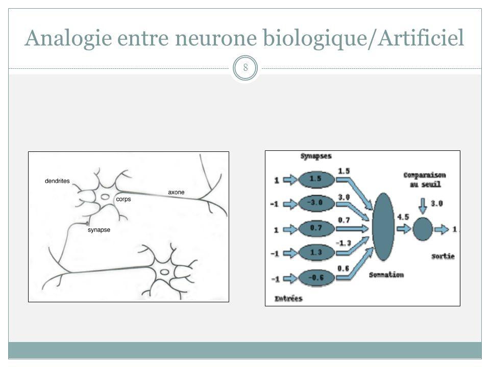 Analogie entre neurone biologique/Artificiel 8
