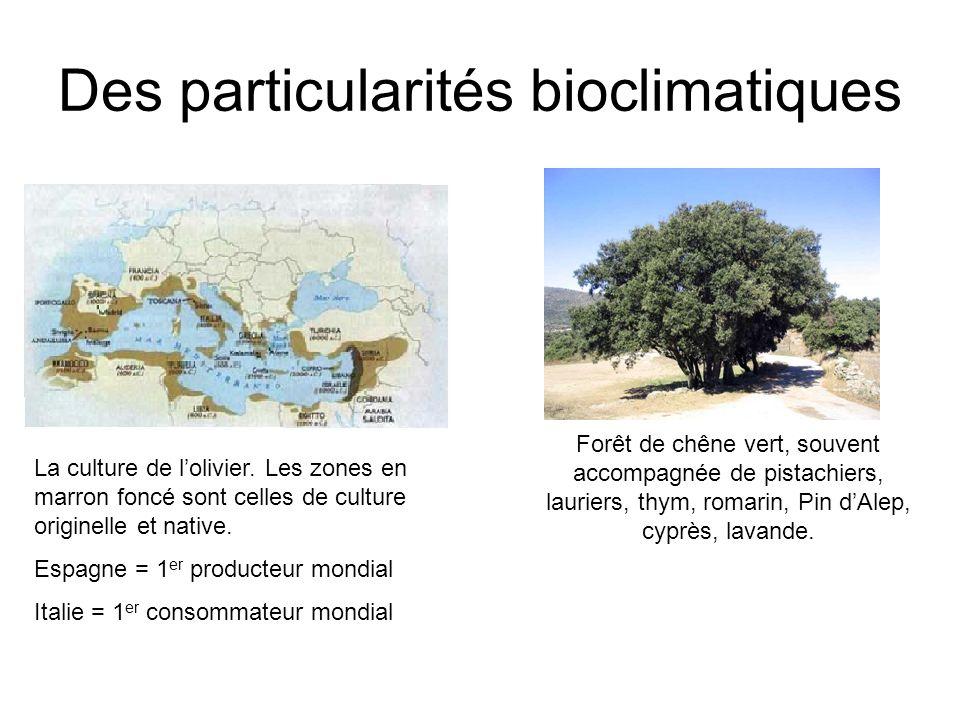 Des particularités bioclimatiques La culture de lolivier. Les zones en marron foncé sont celles de culture originelle et native. Espagne = 1 er produc