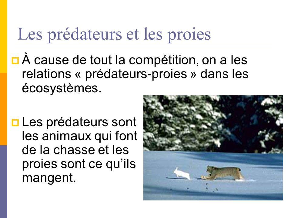 Les prédateurs et les proies À cause de tout la compétition, on a les relations « prédateurs-proies » dans les écosystèmes. Les prédateurs sont les an
