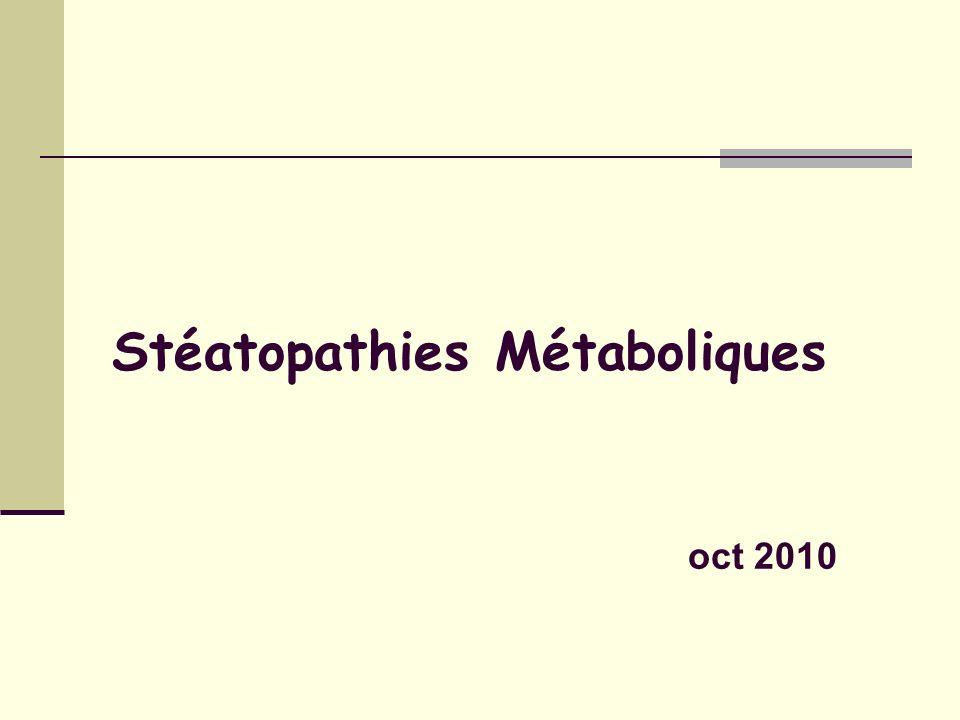 Biopsie du foie Stéatose macrovaculoaire.