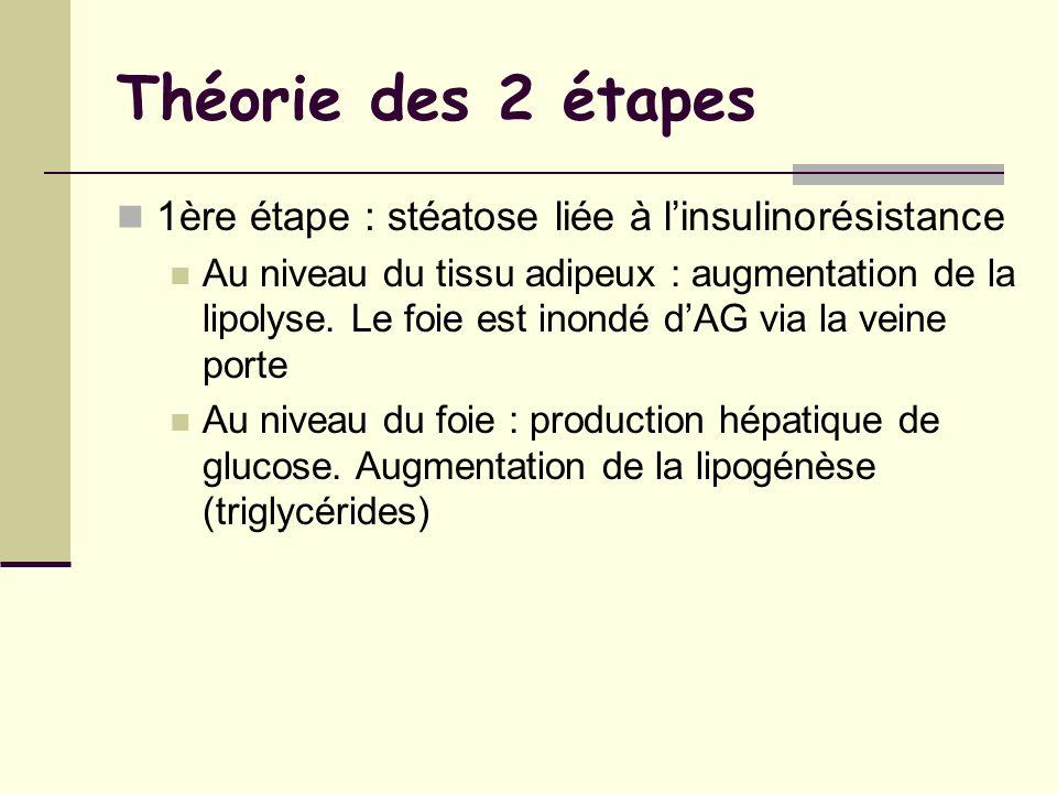 Théorie des 2 étapes 1ère étape : stéatose liée à linsulinorésistance Au niveau du tissu adipeux : augmentation de la lipolyse. Le foie est inondé dAG
