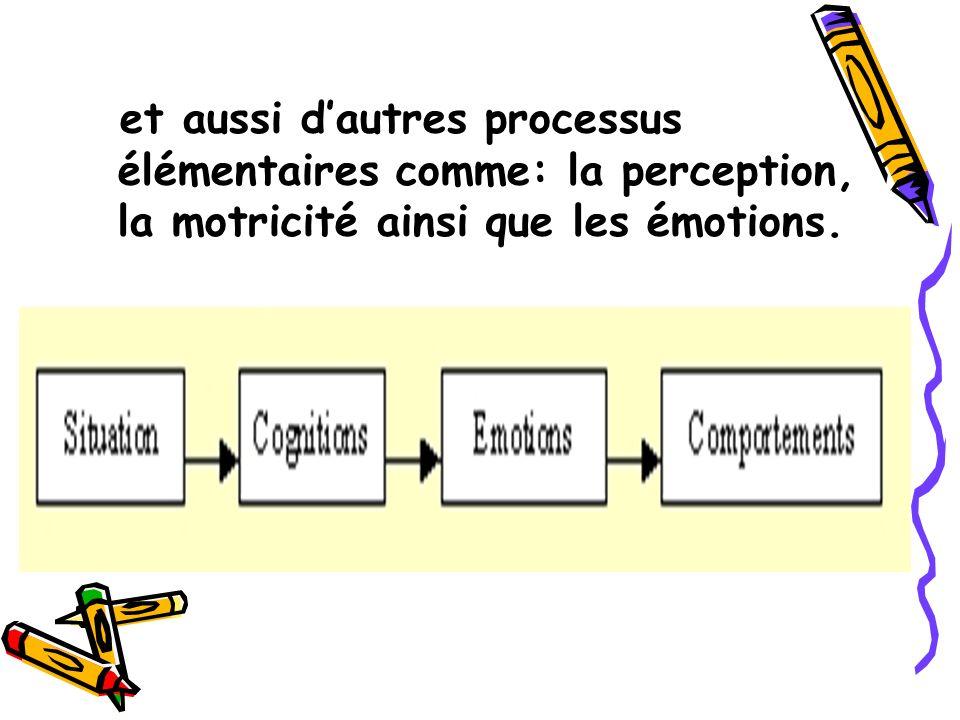 et aussi dautres processus élémentaires comme: la perception, la motricité ainsi que les émotions.