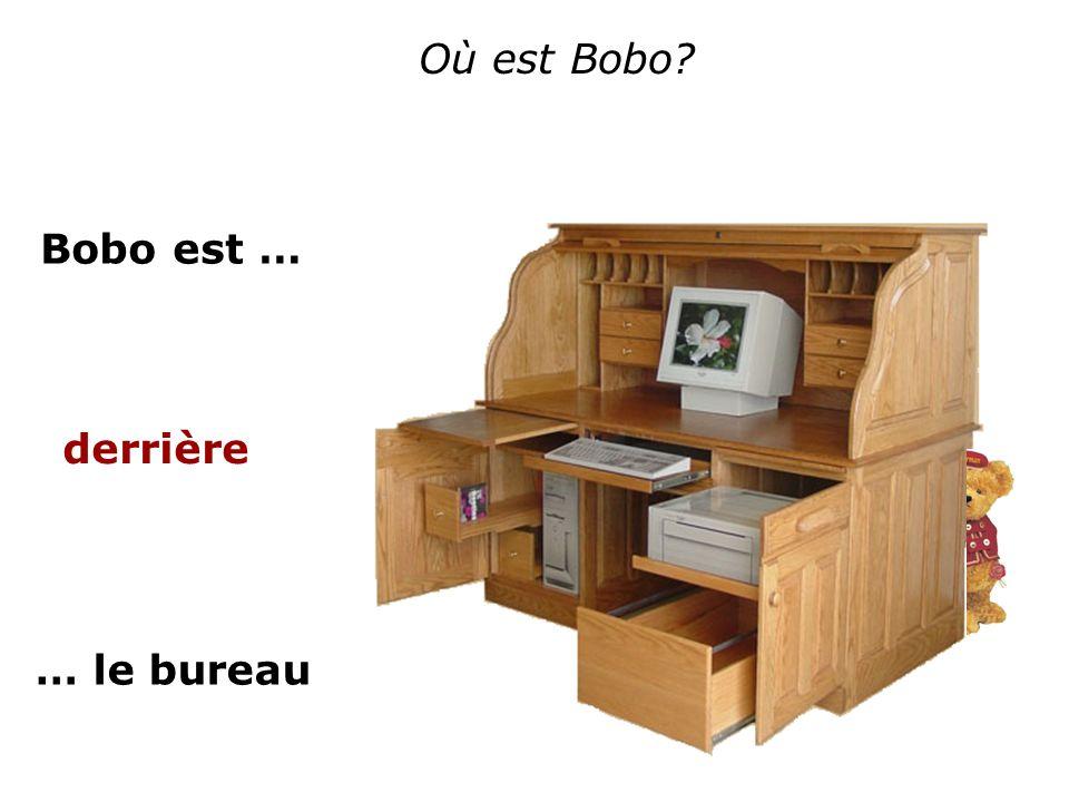 Où est Bobo? Bobo est … … le bureau derrière