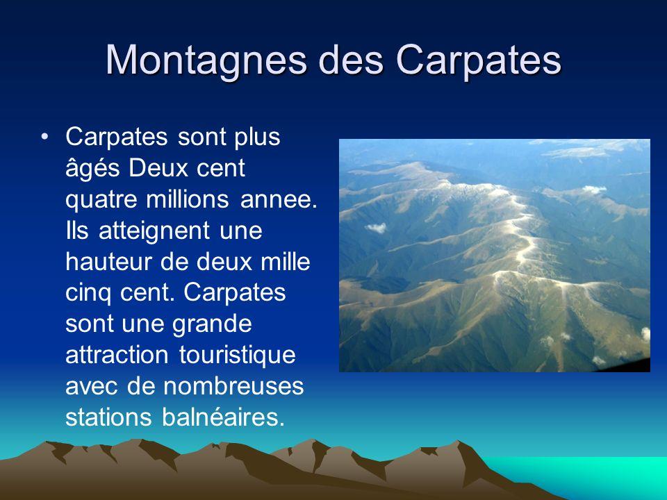 Montagnes des Carpates Carpates sont plus âgés Deux cent quatre millions annee. Ils atteignent une hauteur de deux mille cinq cent. Carpates sont une