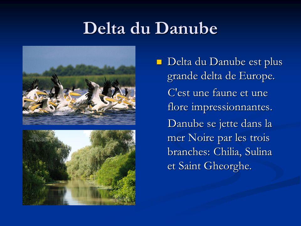 Delta du Danube Delta du Danube est plus grande delta de Europe. C'est une faune et une flore impressionnantes. Danube se jette dans la mer Noire par