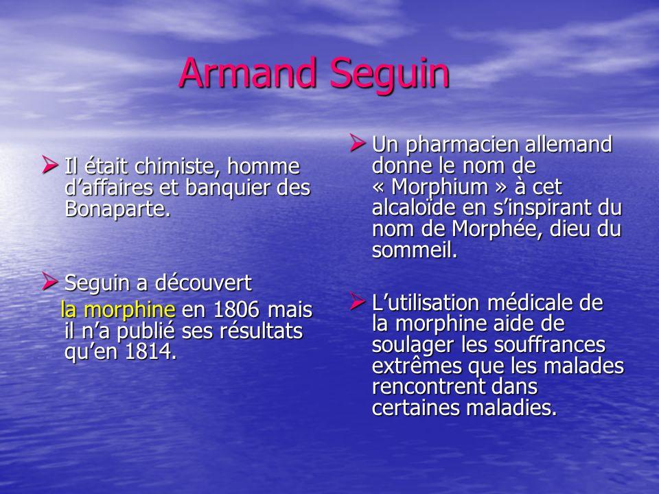 Armand Seguin Armand Seguin Il était chimiste, homme daffaires et banquier des Bonaparte. Il était chimiste, homme daffaires et banquier des Bonaparte