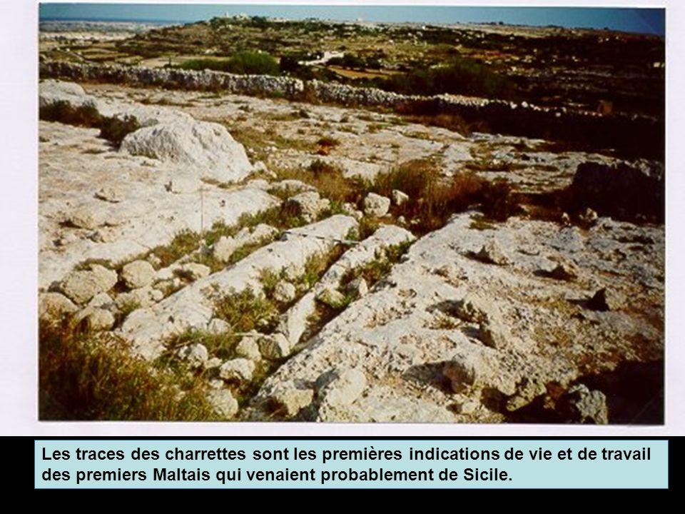 Les traces des charrettes sont les premières indications de vie et de travail des premiers Maltais qui venaient probablement de Sicile.