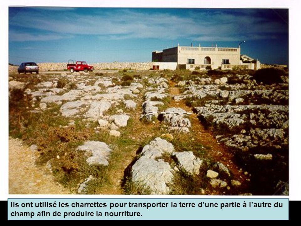 Ils ont utilisé les charrettes pour transporter la terre dune partie à lautre du champ afin de produire la nourriture.