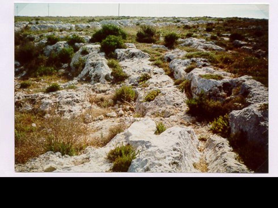 Le temple de Ħaġar Qim Ce temple qui date de lâge du cuivre, était construit aux alentours de 2700 avant J.C.