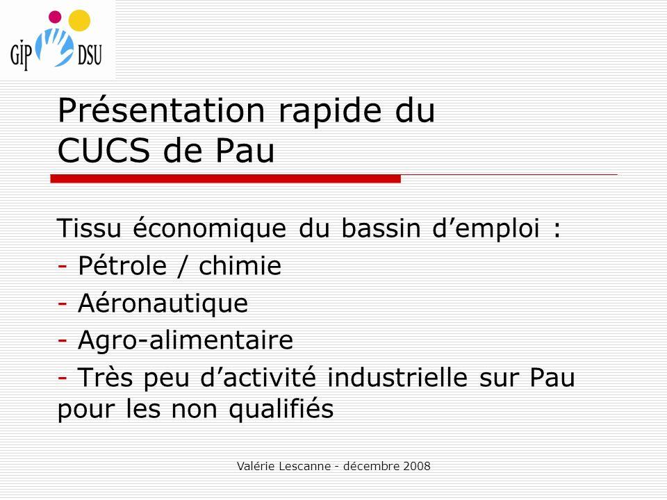 Valérie Lescanne - décembre 2008 Présentation rapide du CUCS de Pau Tissu économique du bassin demploi : - Pétrole / chimie - Aéronautique - Agro-alimentaire - Très peu dactivité industrielle sur Pau pour les non qualifiés