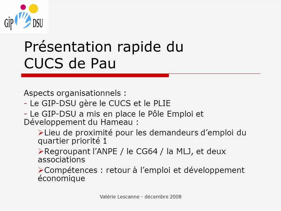 Valérie Lescanne - décembre 2008 Présentation rapide du CUCS de Pau Aspects organisationnels : - Le GIP-DSU gère le CUCS et le PLIE - Le GIP-DSU a mis en place le Pôle Emploi et Développement du Hameau : Lieu de proximité pour les demandeurs demploi du quartier priorité 1 Regroupant lANPE / le CG64 / la MLJ, et deux associations Compétences : retour à lemploi et développement économique