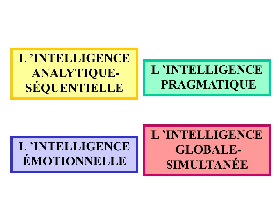 L INTELLIGENCE ANALYTIQUE- SÉQUENTIELLE L INTELLIGENCE PRAGMATIQUE L INTELLIGENCE ÉMOTIONNELLE L INTELLIGENCE GLOBALE- SIMULTANÉE