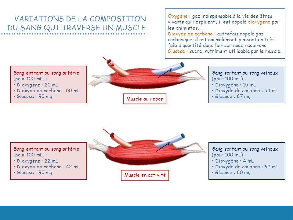 VARIATIONS DE LA COMPOSITION DU SANG QUI TRAVERSE UN MUSCLE Sang entrant ou sang artériel (pour 100 mL) : Dioxygène : 20 mL Dioxyde de carbone : 50 mL