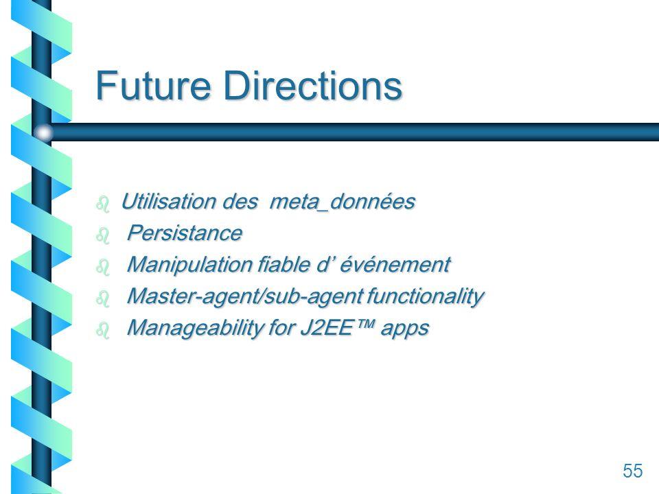 155 Future Directions b Utilisation des meta_données b Persistance b Manipulation fiable d événement b Master-agent/sub-agent functionality b Manageability for J2EE apps 55