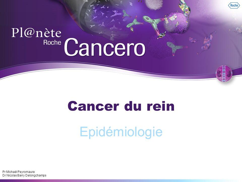 1 Cancer du rein Epidémiologie Pr Michaël Peyromaure Dr Nicolas Barry Delongchamps