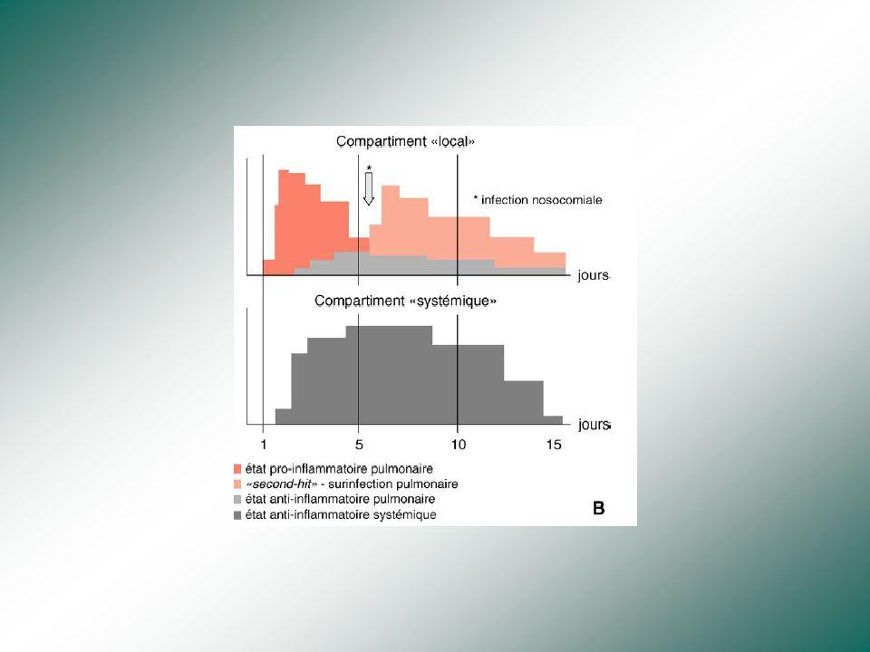 Réparation Prolifération de pneumocytes II, puis différenciation en pneumocytesI Facteurs de croissance, TGF-beta Apoptose du surplus de pneumocytesII