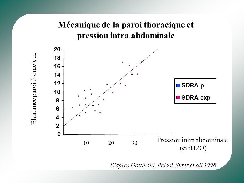 Données scanographiques - Non homogénéité du parenchyme pulmonaire - 3 types de zone : zone de parenchyme sain zone de parenchyme recrutable zone de c