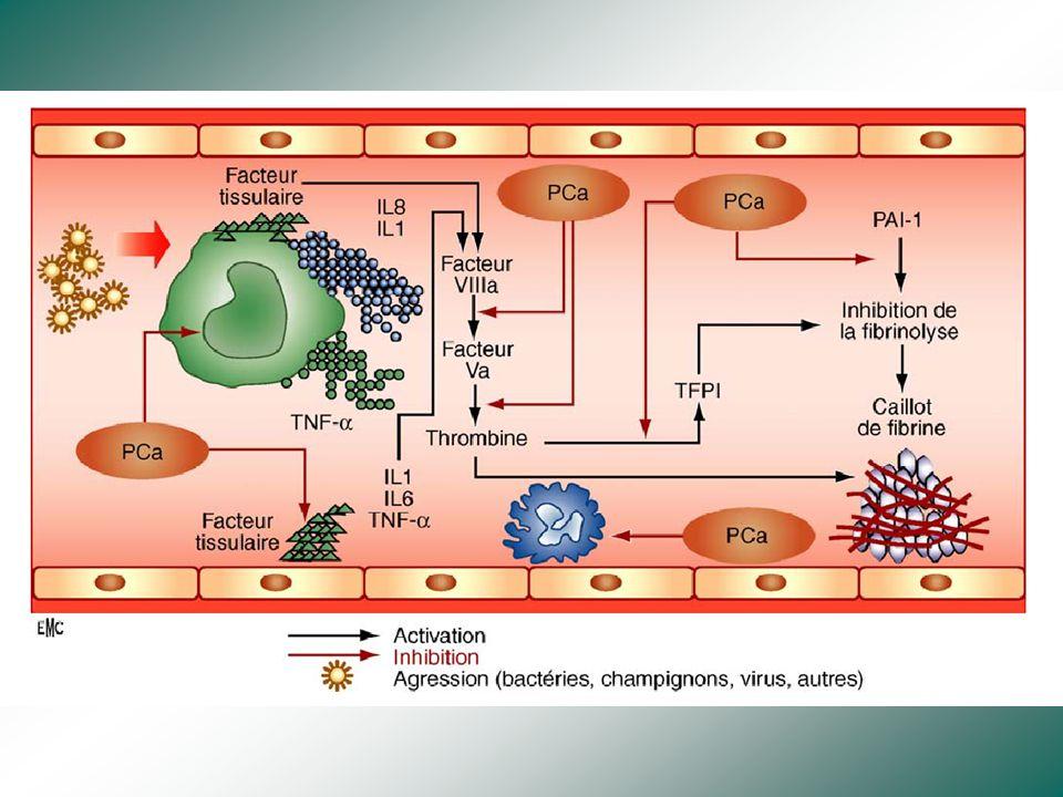 Mécanismes inflammatoires(1) Médiateurs cellulaires –Polynucléaires neutrophiles… –Macrophages alvéolaires… Médiateurs humoraux –Cytokines et autres s
