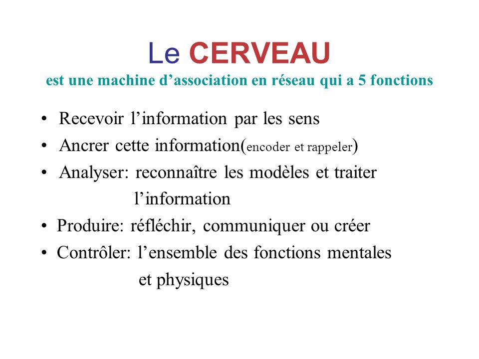 Le CERVEAU est une machine dassociation en réseau qui a 5 fonctions Recevoir linformation par les sens Ancrer cette information( encoder et rappeler )