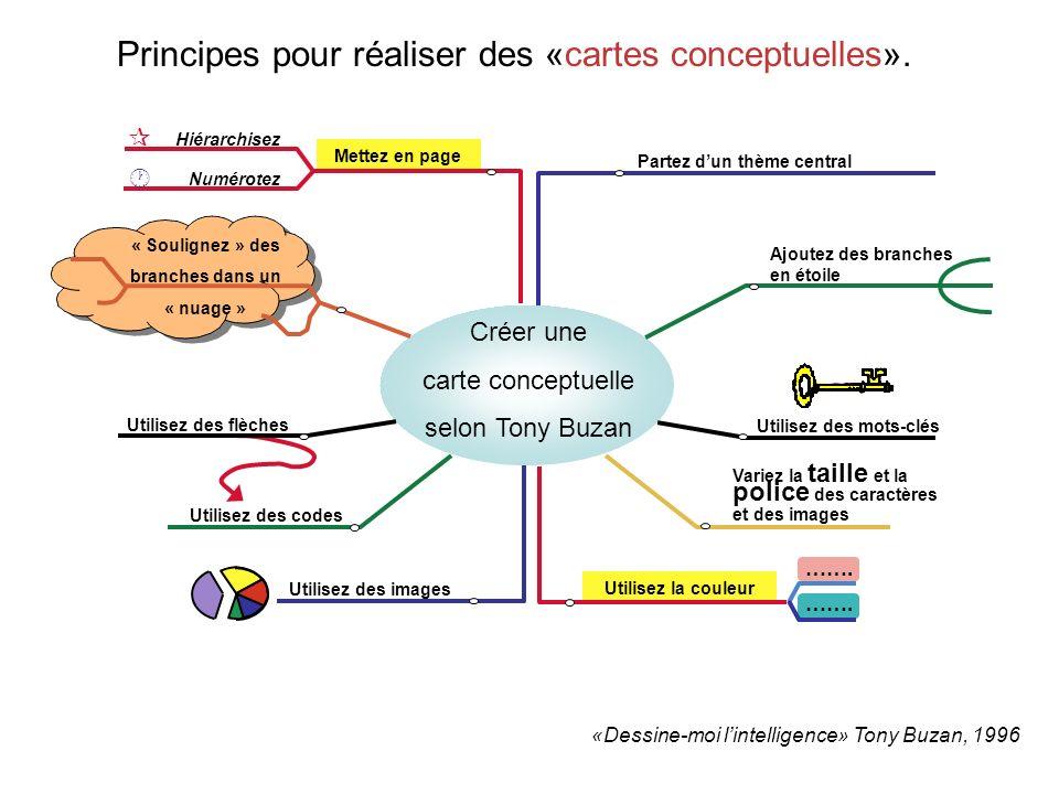 Utilisez la couleur Mettez en page Principes pour réaliser des «cartes conceptuelles». «Dessine-moi lintelligence» Tony Buzan, 1996 Créer une carte co