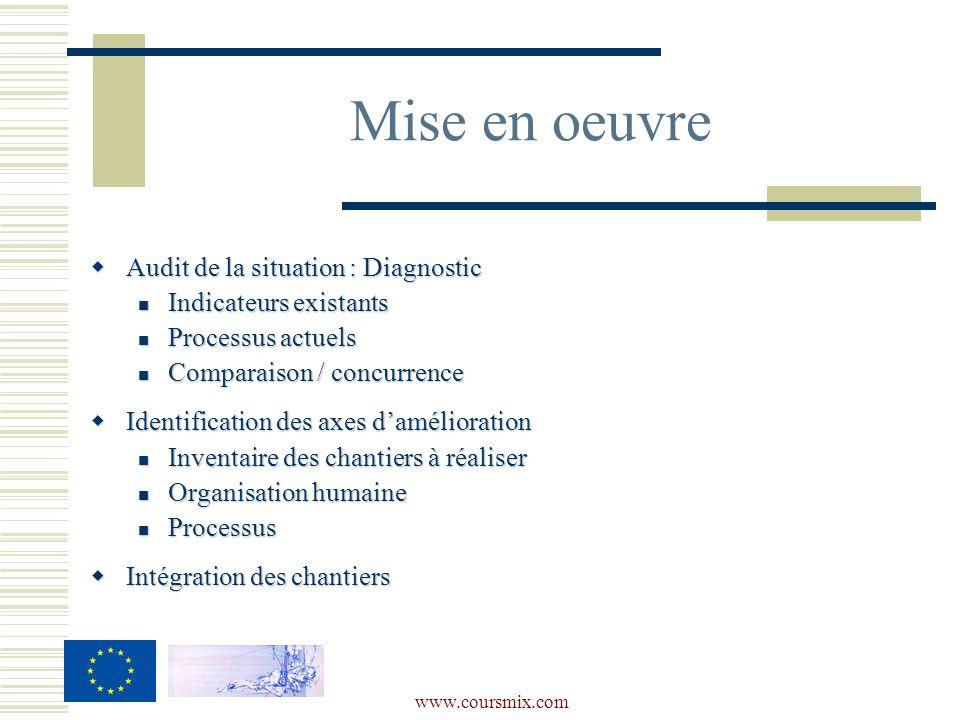 www.coursmix.com Audit de la situation : Diagnostic Audit de la situation : Diagnostic Indicateurs existants Indicateurs existants Processus actuels P