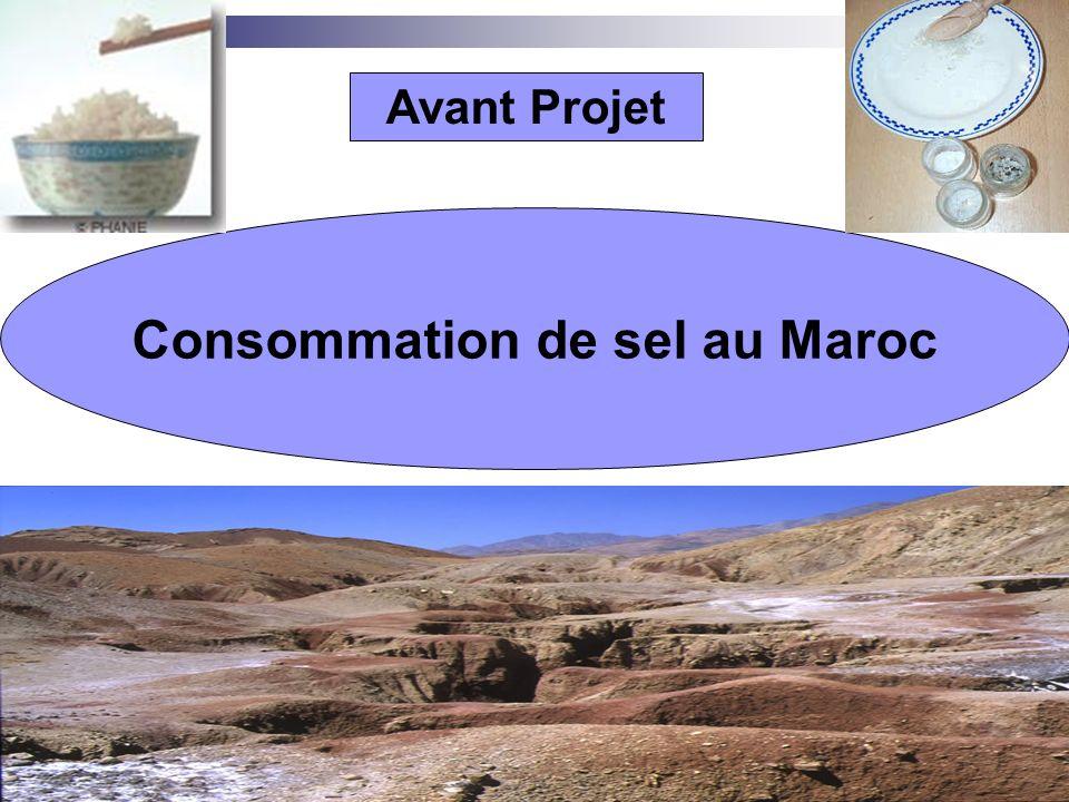 www.coursmix.com Avant Projet Consommation de sel au Maroc