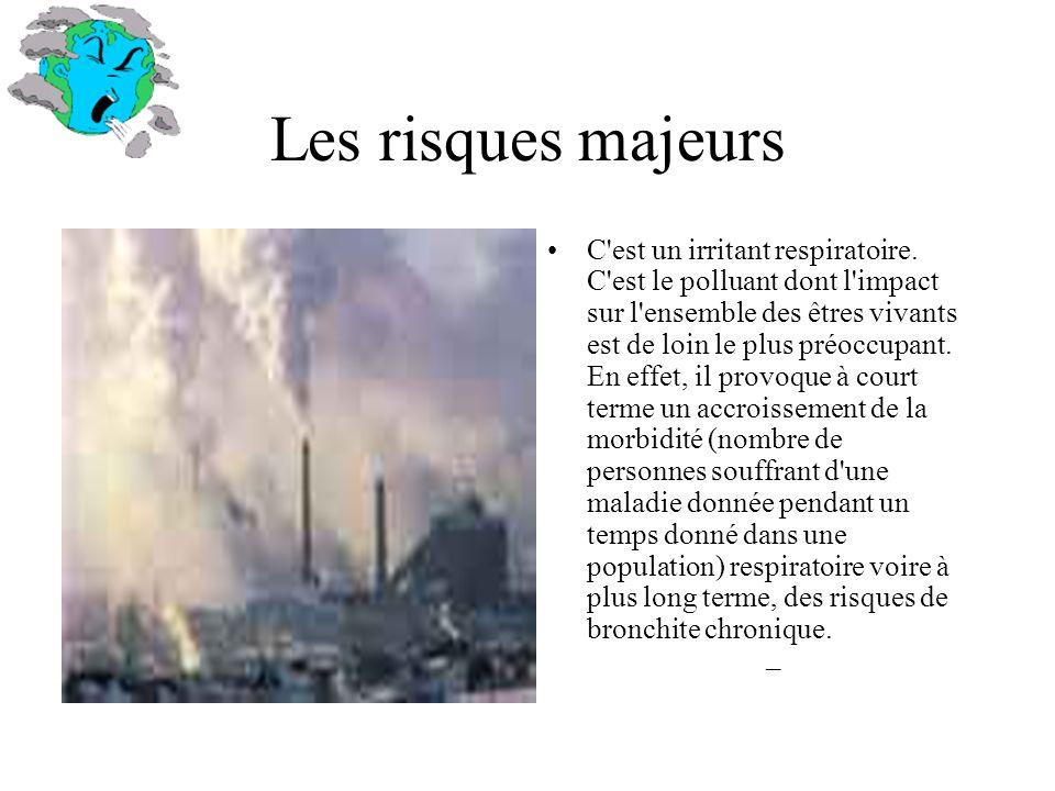 Les risques majeurs C'est un irritant respiratoire. C'est le polluant dont l'impact sur l'ensemble des êtres vivants est de loin le plus préoccupant.