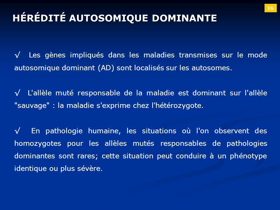 16 HÉRÉDITÉ AUTOSOMIQUE DOMINANTE Les gènes impliqués dans les maladies transmises sur le mode autosomique dominant (AD) sont localisés sur les autoso