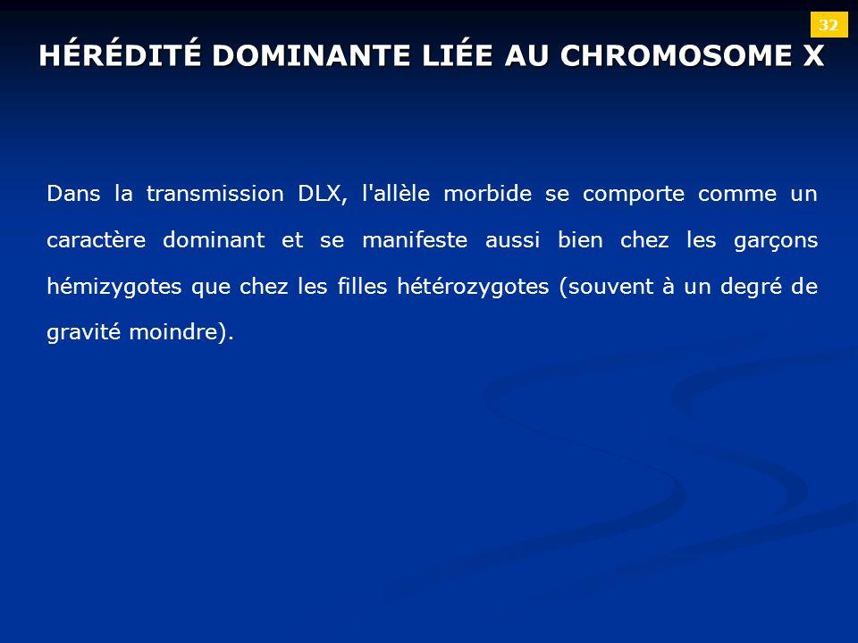 32 HÉRÉDITÉ DOMINANTE LIÉE AU CHROMOSOME X Dans la transmission DLX, l'allèle morbide se comporte comme un caractère dominant et se manifeste aussi bi