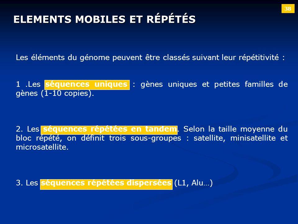 38 ELEMENTS MOBILES ET RÉPÉTÉS Les éléments du génome peuvent être classés suivant leur répétitivité : 1.Les séquences uniques : gènes uniques et peti