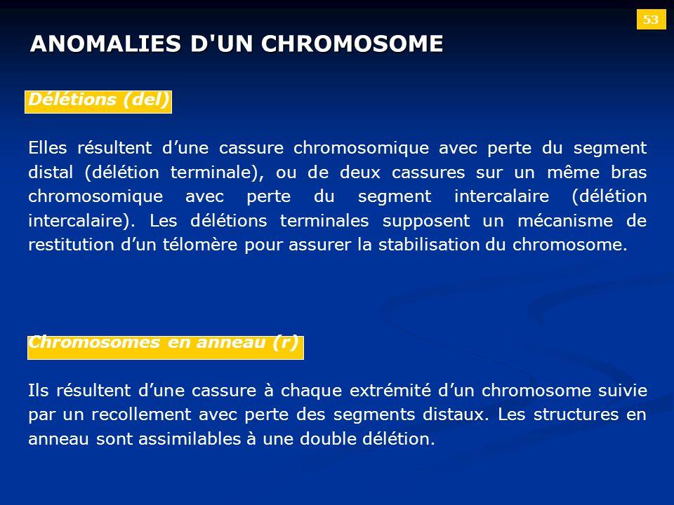 ANOMALIES D'UN CHROMOSOME 53 Délétions (del) Elles résultent dune cassure chromosomique avec perte du segment distal (délétion terminale), ou de deux