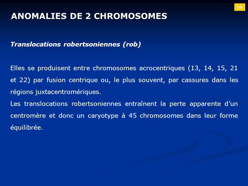 ANOMALIES DE 2 CHROMOSOMES 56 Translocations robertsoniennes (rob) Elles se produisent entre chromosomes acrocentriques (13, 14, 15, 21 et 22) par fus