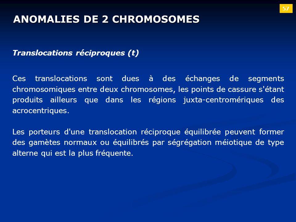 ANOMALIES DE 2 CHROMOSOMES 57 Translocations réciproques (t) Ces translocations sont dues à des échanges de segments chromosomiques entre deux chromos