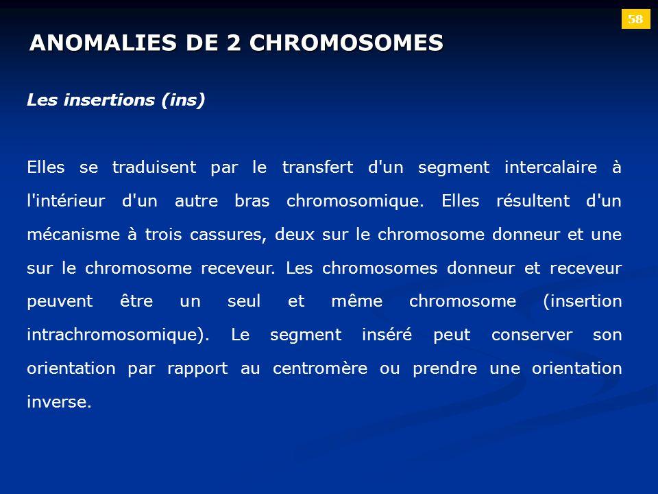 58 ANOMALIES DE 2 CHROMOSOMES Les insertions (ins) Elles se traduisent par le transfert d'un segment intercalaire à l'intérieur d'un autre bras chromo