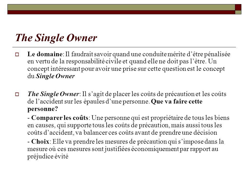 The Single Owner Le domaine: Il faudrait savoir quand une conduite mérite dêtre pénalisée en vertu de la responsabilité civile et quand elle ne doit p