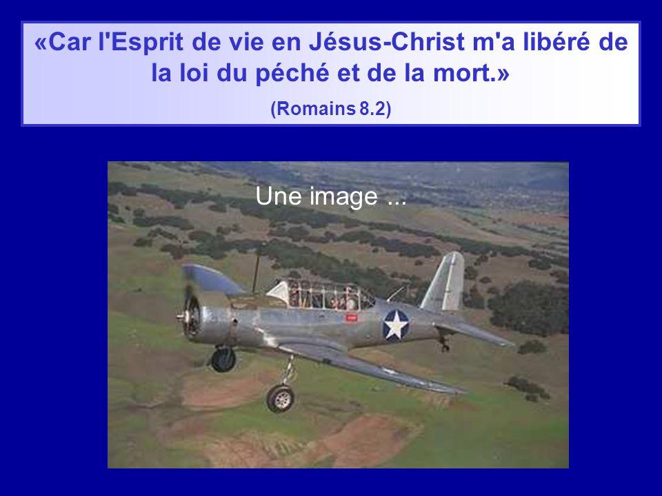 «Car l Esprit de vie en Jésus-Christ m a libéré de la loi du péché et de la mort.» (Romains 8.2) Une image...