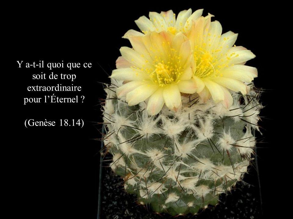 Y a-t-il quoi que ce soit de trop extraordinaire pour lÉternel ? (Genèse 18.14)