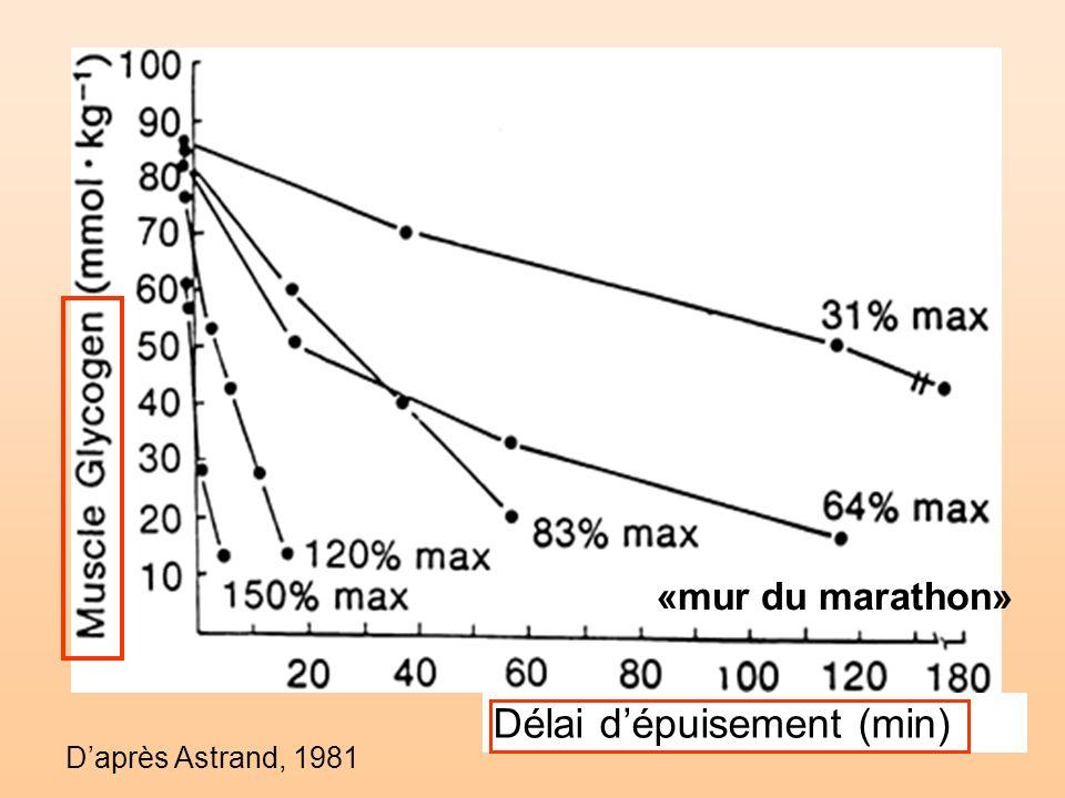 Daprès Astrand, 1981 Délai dépuisement (min) «mur du marathon»