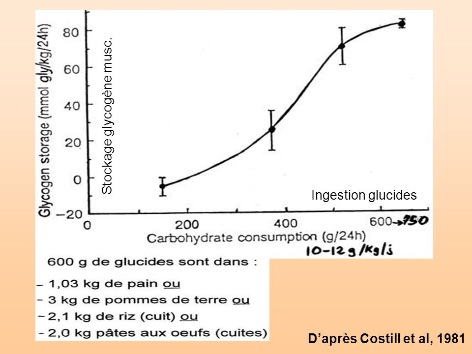 Daprès Costill et al, 1981 Stockage glycogène musc. Ingestion glucides