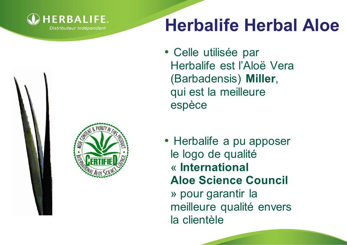HOM, Septembre 2009 Herbalife Herbal Aloe Celle utilisée par Herbalife est lAloë Vera (Barbadensis) Miller, qui est la meilleure espèce Herbalife a pu apposer le logo de qualité « International Aloe Science Council » pour garantir la meilleure qualité envers la clientèle