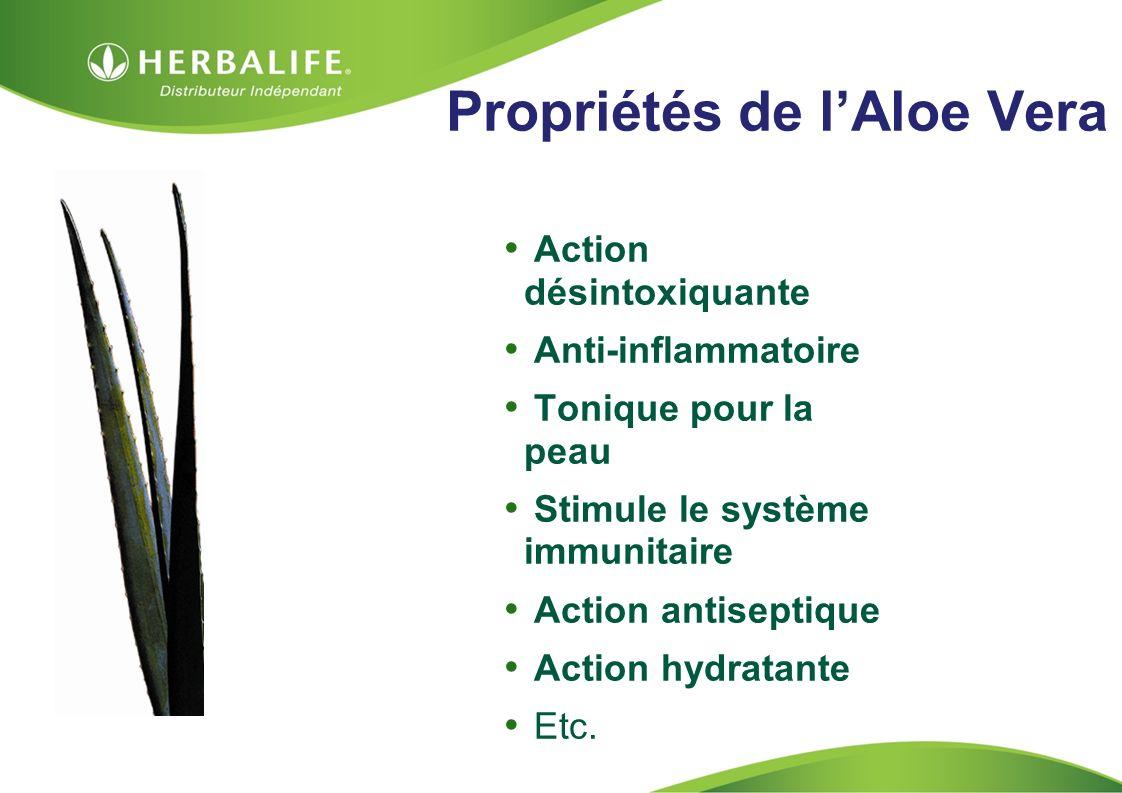 HOM, Septembre 2009 Propriétés de lAloe Vera Action désintoxiquante Anti-inflammatoire Tonique pour la peau Stimule le système immunitaire Action anti
