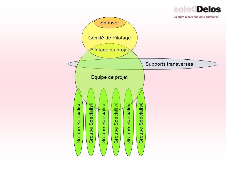 Groupe Spécialisé Supports transverses Équipe de projet Comité de Pilotage Pilotage du projet Sponsor